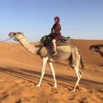 モロッコツアー④